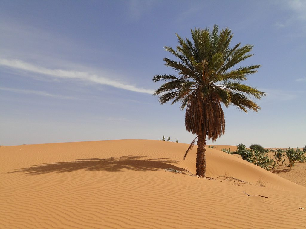 THE HOTTEST COUNTRIES IN THE WORLD